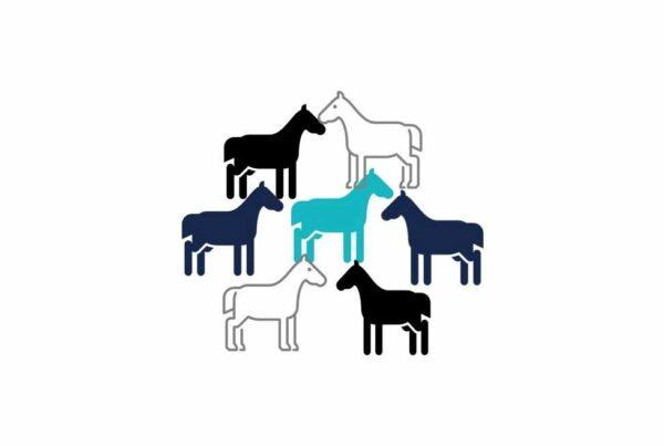 Pferde 2 Kl1