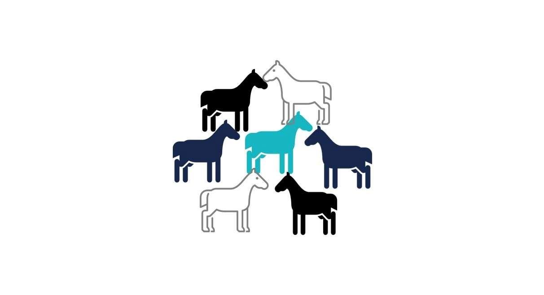 Die besten Rennpferde
